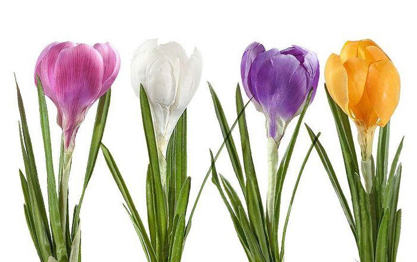 Крокус белоруссия цветы искусственные